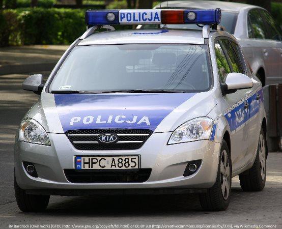 Policja Stargard: Policjanci stargardzkiej drogówki zatrzymując pociąg pośpieszny pomogli rannemu zwierzęciu